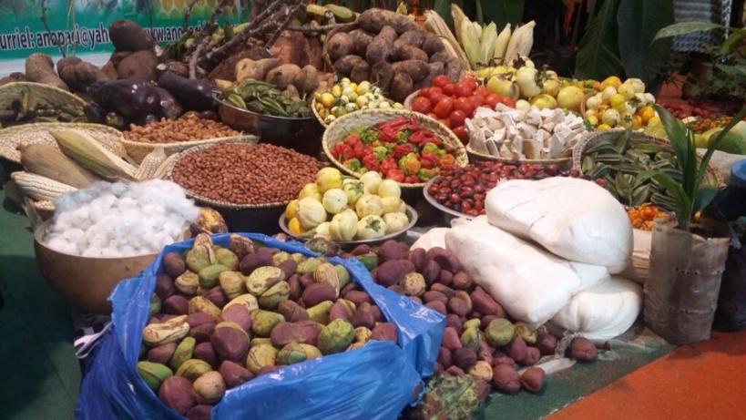Commercialisation des produits agricoles: les Niayes réfléchissent sur des approches idoines