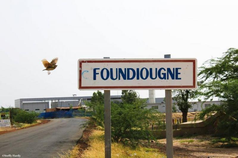 Département de Foundiougne: la campagne agricole menacée par une longue pause pluviométrique