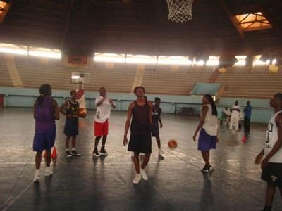 Basket : retour au calme dans la tanière des « Lionnes » qui reprennent le chemin des entraînements