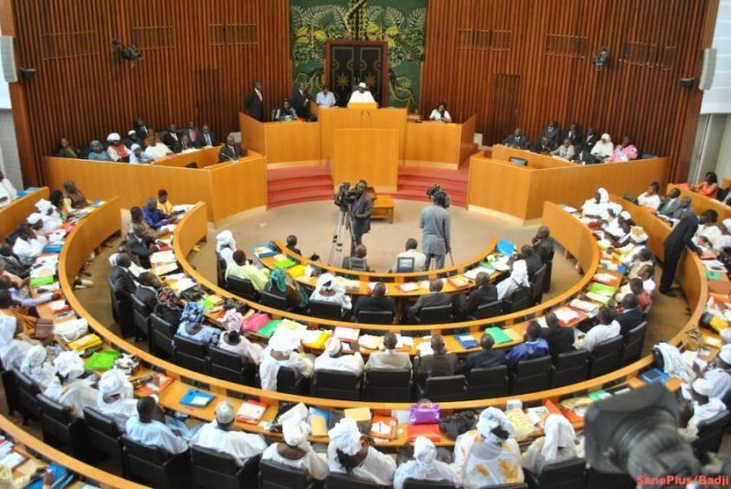 Assemblée nationale: L'ère des députés – passeurs. Par Seybani Sougou