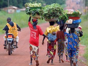 Toute la région de Bossangoa, au nord-ouest de la Centrafrique, est sous la menace d'une guerre interreligieuse. AFP/LIONEL HEALING