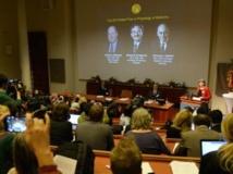 L'annonce du Prix Nobel de Médecine, le 7 octobre 2013 à Stockholm. AFP PHOTO / JONATHAN NACKSTRAND