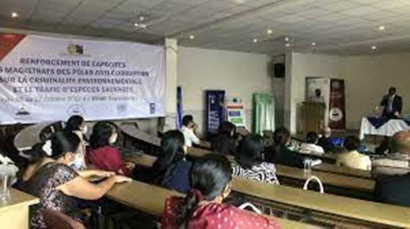 Madagascar: une réunion de magistrats pour réfléchir sur les crimes contre l'environnement
