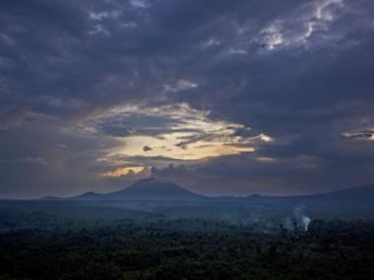 Exploitation du pétrole dans le parc de Virunga: une option «pas envisageable» pour WWF