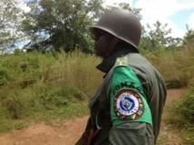 Elément de la Fomac en patrouille dans les environs de Bosangoa, Centrafrique. Laurent Correau / RFI