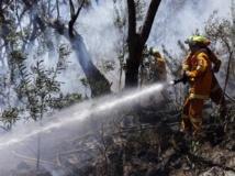 3 000 pompiers sont mobilisés pour maîtriser les incendies de la région de Sydney. REUTERS/David Gray