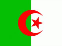 Un manifestant a arraché le drapeau du consulat d'Algérie à Casablanca, avant d'être arrêté, le 1er novembre 2013