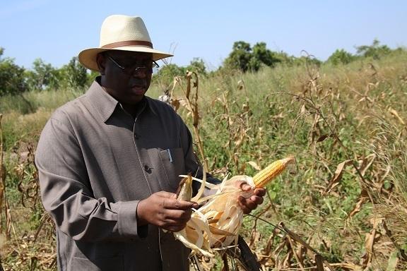 Le président Sall : « Il faut que les Sénégalais retournent vers la terre »