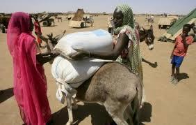 Darfour : au moins 460 000 personnes déplacées en 2013 du fait des violences tribales (ONU)