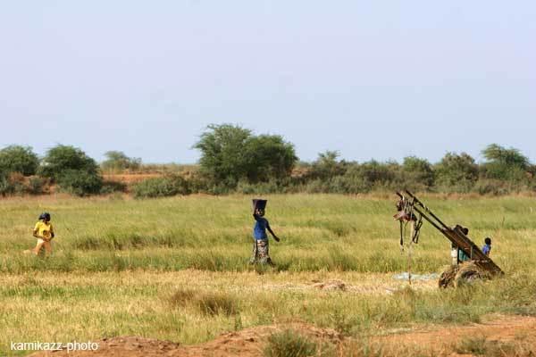L'AFD appuie le développement de la microfinance pour les habitants des zones rurales et agricoles du Nord du Sénégal