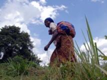 Dans la région de Beni, au Nord-Kivu, les habitants vivent dans la crainte d'être enlevés par les ADF-Nalu. AFP PHOTO / LIONEL HEALING
