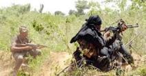 Des bandes armées sévissent en Casamance : 26 vélos 2 motos et 500 000 fcfa  emportés