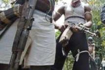 Regain de violence en Casamance: l'Armée et la gendarmerie en alerte
