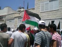 Territoires palestiniens : évacuation d'opposants à la colonisation