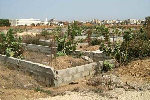 Foncier : la guerre est déclarée à la mairie de Thies, Mbacké et Diourbel