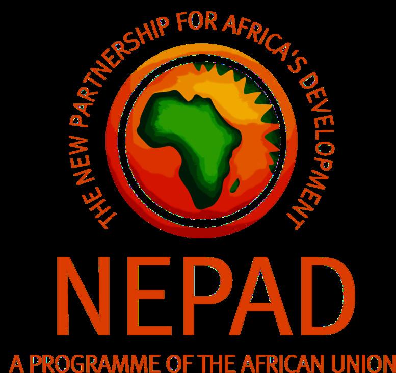 Nepad Cherche une position commune pour l'efficacité du développement