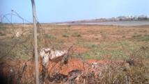 Cité avion, dans le quartier populaire de Ouakam. Derrière une clôture délabrée, affaissée par endroits, la piste est là, à quelques dizaines de mètres seulement