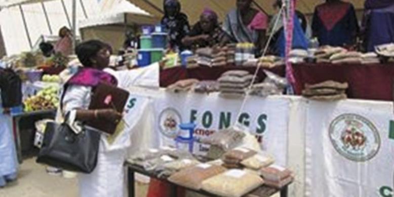 FIARA 2014: la vision d'une économie profitable aux ruraux, équilibrée et durable en question