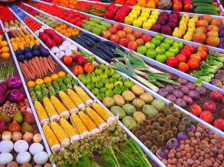 Politique Agricole et Agrobusiness : ces paramètres qui doivent être améliorés par Macky Sall selon des privés français