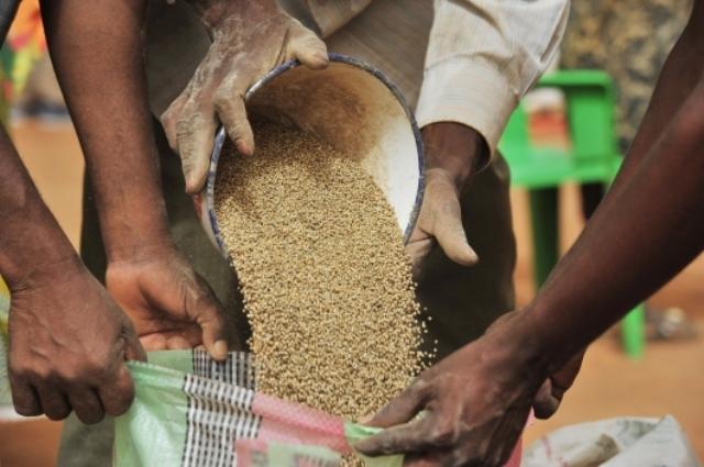 Productions agricoles 2013-2014 : le Sénégal et le Sahel en proie à la malnutrition