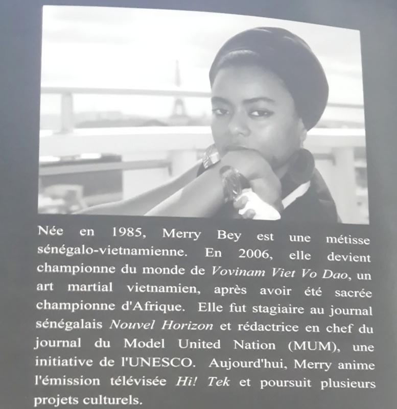 Merry Bey, championne du monde de Viet Vo Doa prend « le train de la vie »