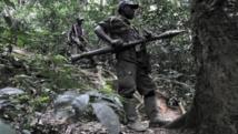 Des rebelles rwandais hutus du FDLR, à 150 km au nord-ouest de Goma, en RDC, en 2009. AFP/ Lionel Healing
