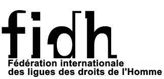 FIDH- LSDH- RADDHO : « : la CREI une juridiction d'exception qui ne garantit pas le droit à un procès équitable »