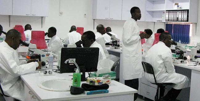 L'AUF et l'IRD font front commun pour soutenir la recherche en Afrique centrale