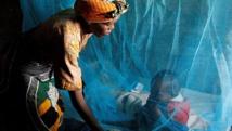 De simples précautions pour les femmes enceintes peuvent réduire de 18 % la mortalité néonatale et de 21% le risque de faible poids à la naissance. M. Hallahan/Sumitomo Chemical - Olyset Net