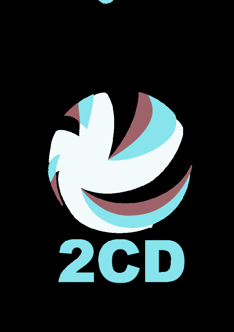 Le 2CD parle des «défis et enjeux de la fonctionnalité des nouveaux ordres de collectivités locales »