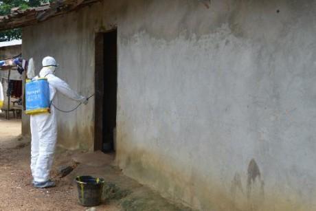 Ebola : 5 ONG internationales à l'Onu contre l'anéantissement des 10 ans de progrès