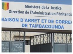 Chaude fête de Tabaski à la MAC de Tambacounda-Un mort et deux (2) blessés : Les jeunes assiègent la demeure de Me Sidiki Kaba