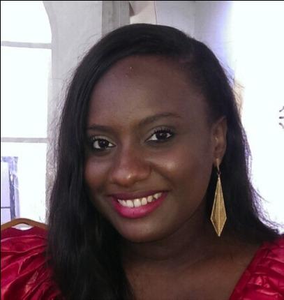De l'analyse de la protection des investisseurs étrangers dans les Accords Bilatéraux d'Investissement du Sénégal