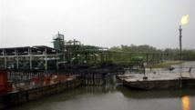 En 2008, des milliers de barils de pétrole du géant Shell s'étaient déversés dans le delta du Niger, dévastant l'écosystème. Archives AFP