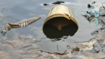 Delta du Niger: compensations de Shell