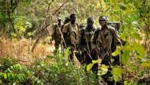 Une patrouille l'armée ougandaise dans la jungle sur les traces des rebelles de la LRA, en avril 2012. AFP PHOTO/STRINGER