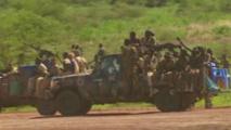 Gouvernement et rébellion reviennent aux accords de janvier 2014