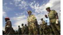 Combattants des FDLR