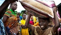 Ebola: le Liberia face au défi de la relance agricole