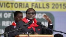 Robert Mugabe a fait plusieurs annoncent politiques lors de son discours donné à l'occasion de sa fête d'anniversaire, le 28 février. REUTERS/Philimon Bulawayo
