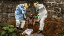 Ebola : le bilan d'un an
