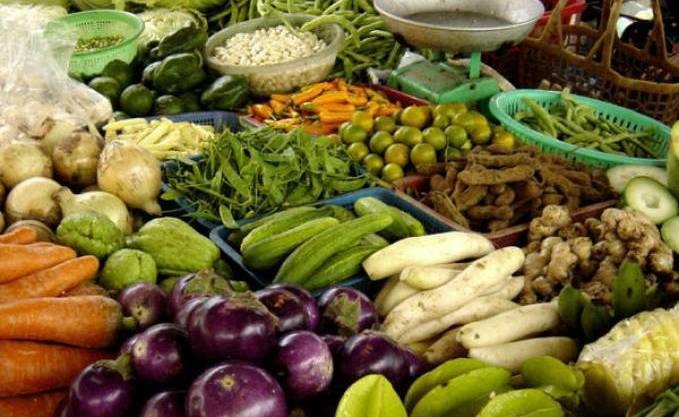 Discours à la Nation : L'autosuffisance alimentaire, vecteur de l'indépendance économique