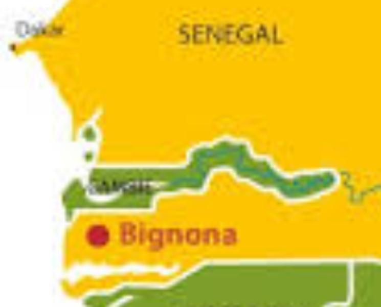 Fusillade à Mahmouda Chérif – Bignona: sept blessés dont trois graves – des chérifs s'entre-tuent