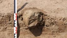 Un outil découvert dans le nord-ouest du Kenya près du lac Turkana, qui aurait pu servir de marteau pour ouvrir des noix ou tubercules. REUTERS/MPK-WTAP/Handout