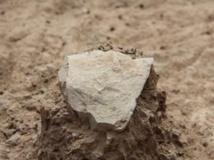 Découverte au Kenya des plus vieux outils du monde