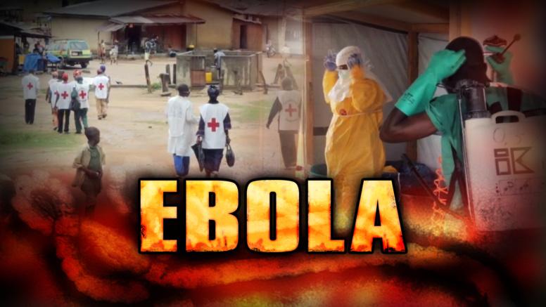 Des chercheurs ont trouvé le talon d'Achille du virus Ebola