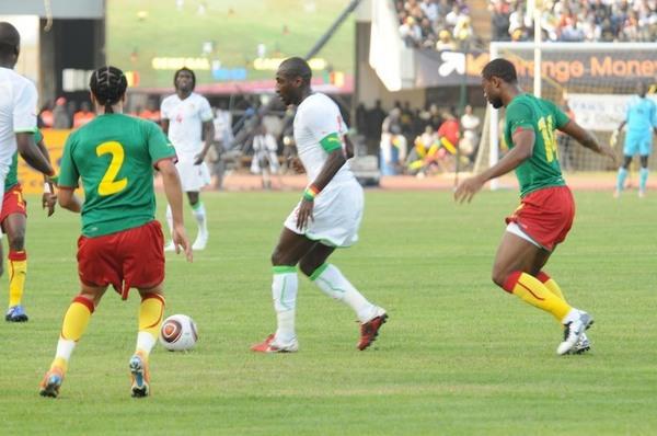 """Match amical : Le Cameroun et l'Algérie sollicitent les """"Lions"""" avant la Namibie"""