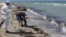 Des employés du Croissant-rouge libyen récupèrent le corps d'un migrant sur la plage de Zouara, le 28 août 2015, quelques heures après le naufrage du bateau. REUTERS/Hani Amara
