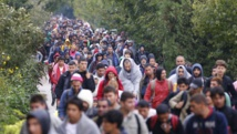 Migrants, de la Serbie à l'Autriche via la Croatie et la Hongrie