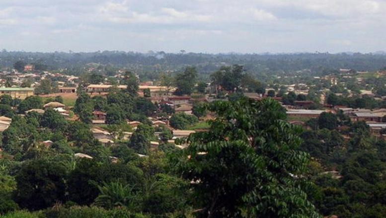Guinée: un mort dans les violences pré-électorales à N'Zérékoré